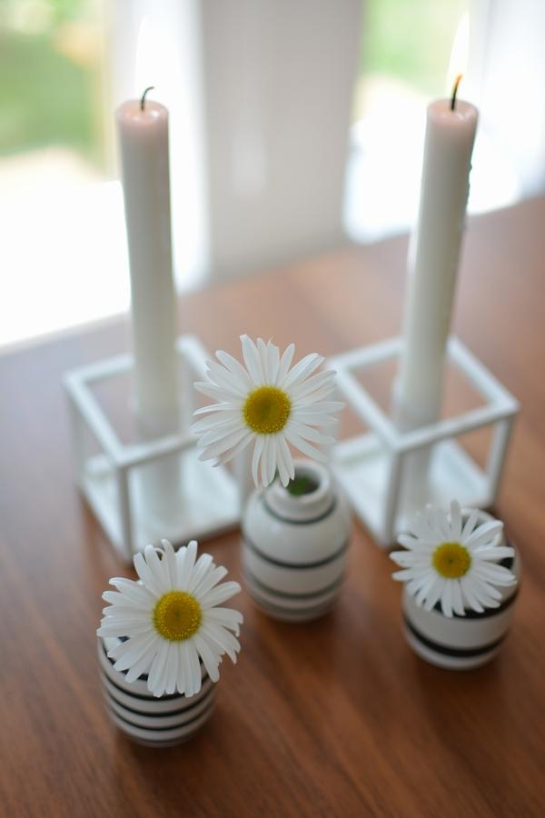 オマジオミニと除虫菊