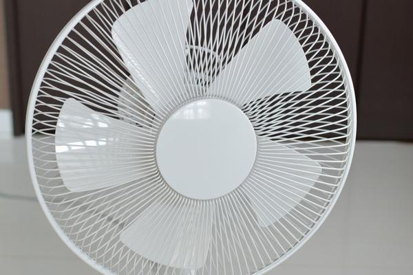 【MUJI】無印良品の季節家電 扇風機が進化してた!欲しい~