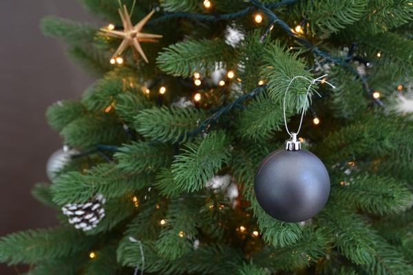 クリスマスツリー 2015年バージョン